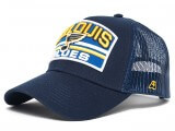 Бейсболка NHL Saint Louis Blues 28163